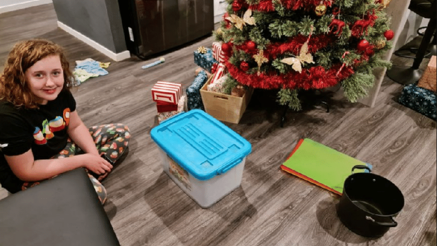 Ella, de 14 anos, ao lado da árvore de Natal e da caixa em que a cobra foi colocada depois de capturada pela mãe - Reprodução/Felicity Richardson