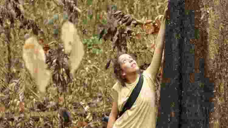 Entre outubro de 2015 e outubro de 2018, pesquisadores voltavam trimestralmente para 21 parcelas de terra e verificavam árvore por árvore - Jos Barlow/Divulgação - Jos Barlow/Divulgação