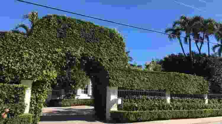 Palm Beach hospeda vários eventos de arrecadação de fundos para causas sociais - BBC MUNDO - BBC MUNDO