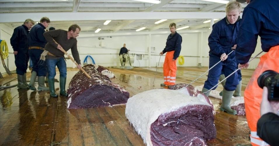 """28.mai.2013 - Homens cortam pedaços de uma das duas baleias de 35 toneladas capturadas por um barco em Hvalfjsrour, na costa ocidental da Islândia. A Michinoku Farm está comercializando a carne desse animal ameaçado de extinção como petisco de luxo para cães no Japão, denuciam ONGs. """"[Os ativistas] veem as baleias como animais importantes, mas consideramos os cachorros tão importantes quanto elas"""", rebate Takuma Konno, dono da empresa"""