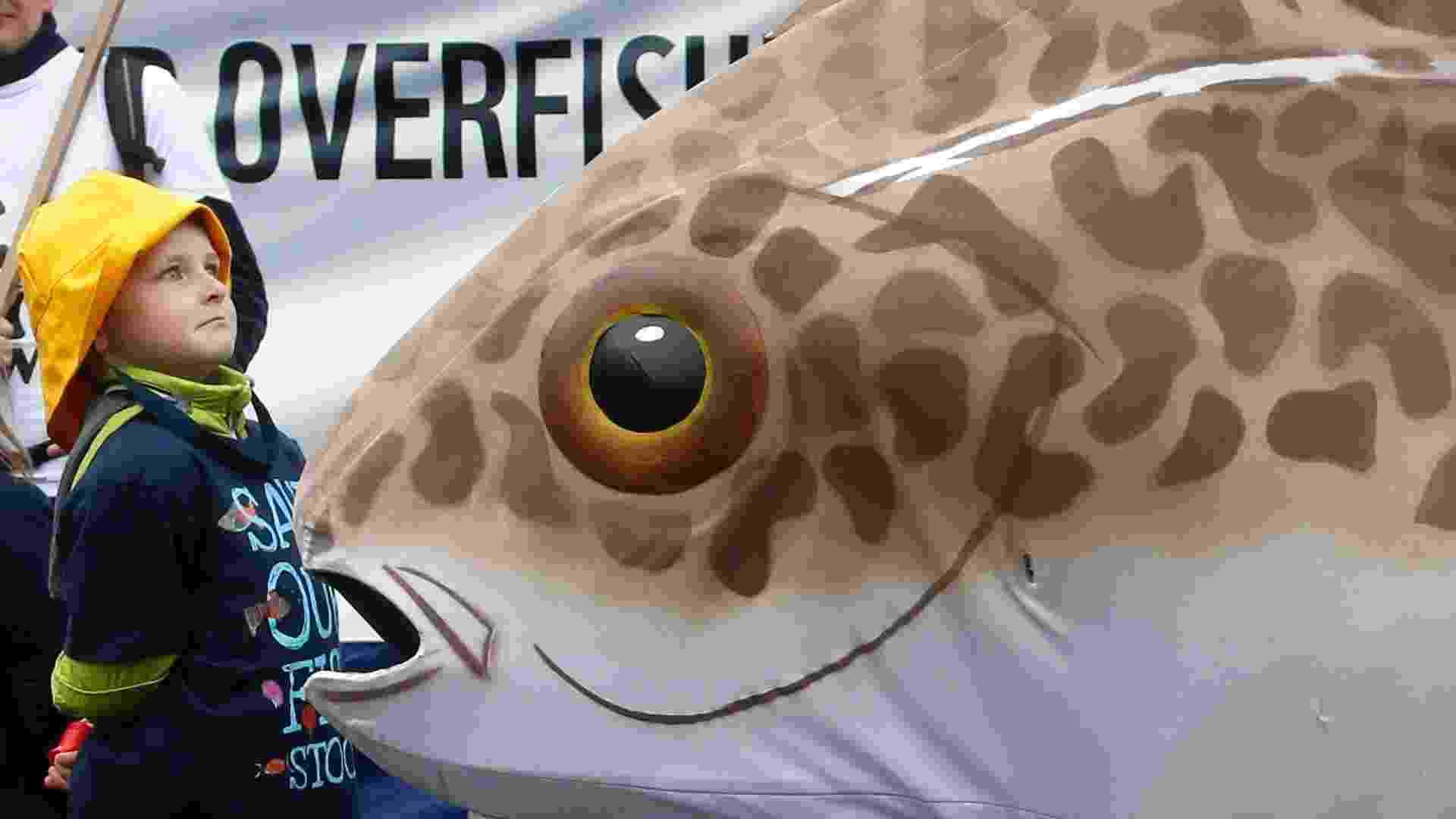 """30.mai.2013 - Menino participa de protesto organizado por uma ONG contra a sobrepesca em frente ao Conselho Europeu em Bruxelas. Os países da União Europeia decidiram reduzir de maneira progressiva de 7% a 5% os descartes de peixes, como se denomina a prática de devolver ao mar a pesca de pouco valor comercial. Os grupos ecologistas saudaram o acordo que """"restabelecerá a saúde"""" de nossos mares - Francois Lenoir/Reuters"""