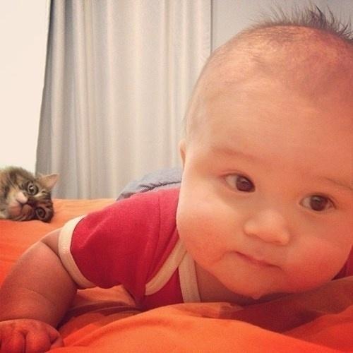 Photobomb com bebês