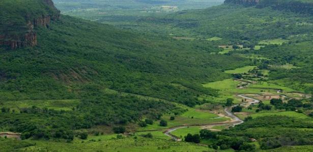 A vegetação da Caatinga cobre a fronteira das cidades de Santa Cruz do Piauí e Picos. A última reserva de biosfera do Brasil foi criada em 2001 para conservar essa área de 198 mil km2 - Eduardo Knapp/Folhapress