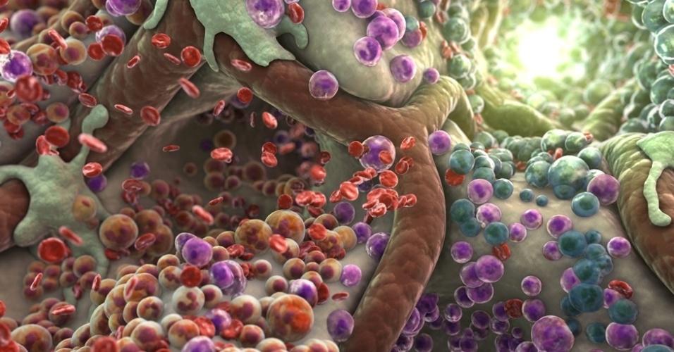 07.jun.2013 - Na imagem, uma cavidade da medula onde podem ser vistas células-tronco hematopoiéticas. O estúdio estúdio XVIVO, de Connecticut (EUA), usa reproduções de imagens de microscópios eletrônicos, ilustrações médicas e fotos para recriar imagens de partes do corpo