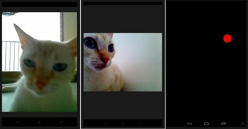 O aplicativo 'Snapcat' foi criado para que os gatos tirem fotos de si mesmos, sem ajuda de ninguém. O app, que é gratuito, exibe uma bola vermelha com um fundo preto para atrair os felinos. Quando o bichano bate na tela, o smartphone tira uma foto automaticamente. O programa ainda permite colocar filtros e acessórios na imagens, que podem ser compartilhadas no Twitter e no Facebook. Disponível apenas para Android