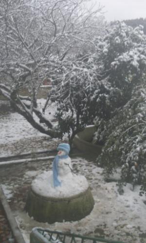 26.jul.2013 - A internauta Jéssica Seredniski Melnek mostra como ficou a paisagem de Papanduva (SC), onde nevou dia 23 de julho