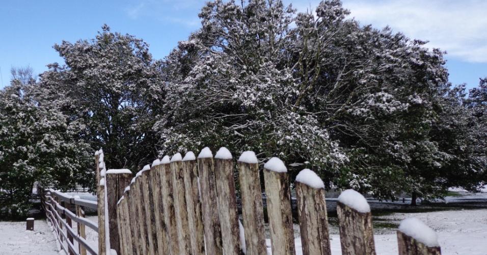 26.jul.2013 - Fotos tiradas por Maria Cláudia Verdan Cisz mostram a neve cobrindo a cidade de Três Barras (SC) no dia 23 de Julho