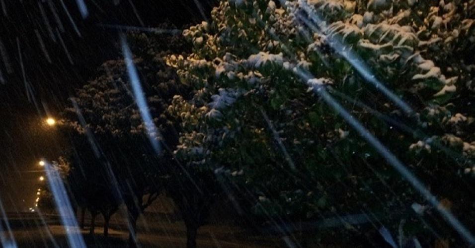 26.jul.2013 - O internauta João Paulo Cubas de Irenópolis (SC), onde nevou, enviou fotos