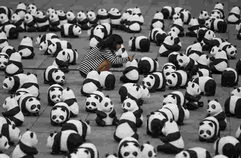 5.ago.2013 - Mulher fotografa figuras de panda espalhadas pela organização de defesa do meio-ambiente WWF (World Wildlife Fund) na frente da principal estação ferroviária de Berlim, na Alemanha, nesta segunda-feira (5). A WWF celebra seus 50 anos de existência chamando a atenção para espécies ameaçadas de extinção - Thomas Peter/Reuters