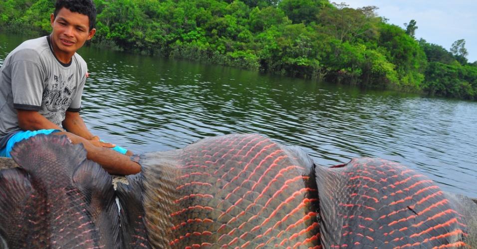 Os peixes pirarucus salgados, por enquanto, só pode ser comercializado no Amazonas (preço final vai de R$ 20 a R$ 25 por quilo) pela falta do carimbo do SIF (Serviço de Inspeção Sanitária)