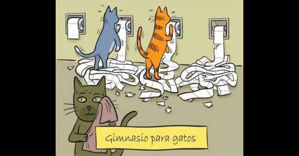 Hábitos de gatos (e vida 'difícil' dos donos) viram piada redes sociais