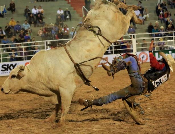 18.ago.2013 - Competidor de prova de montaria na Festa de Peão de Barretos, realizada no interior de São Paulo, é jogado do dorso do touro durante montaria