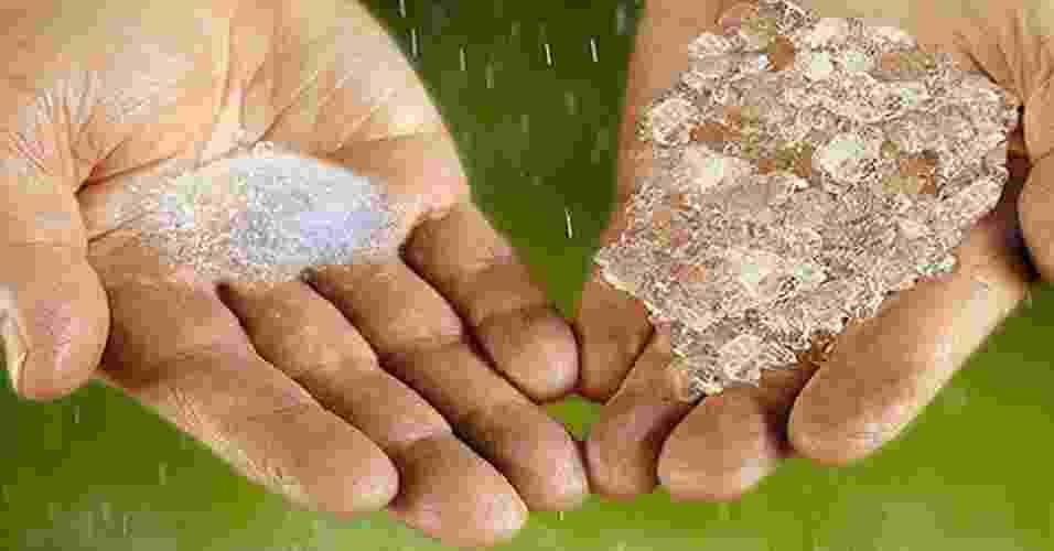 """19.ago.2013 - Batizado de """"Chuva Sólida"""", o pó é capaz de absorver enormes quantidades de água para liberar o líquido aos poucos, permitindo que as plantas sobrevivam a um período de seca. Um litro de água pode ser absorvido por apenas 10 gramas do produto, que é um tipo de polímero especial criado pelo Departamento de Agricultura dos Estados Unidos na década de 1970. """"Ele funciona encapsulando água e pode durar oito a dez anos no solo, dependendo da qualidade da água"""", explica o engenheiro químico Sérgio Jesus Rico Velasco - Divulgação"""