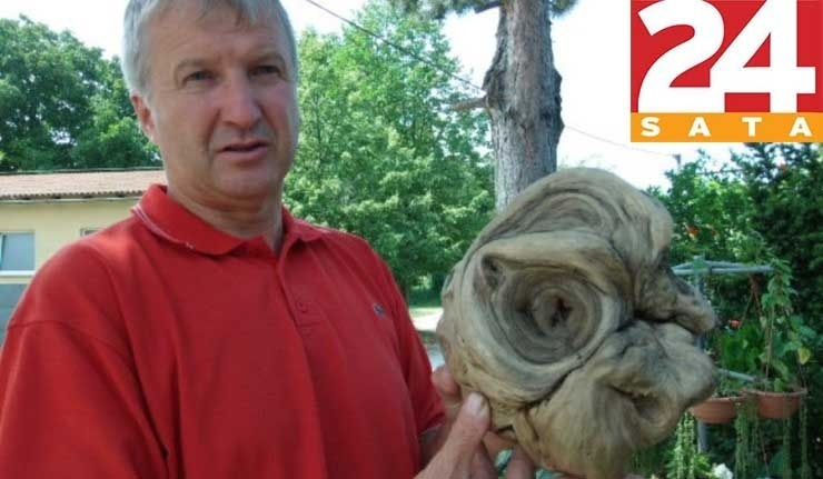 Ivan Stefic, prefeito da cidade croata de Donja Dubrava, exibe a suposta cabeça de alienígena