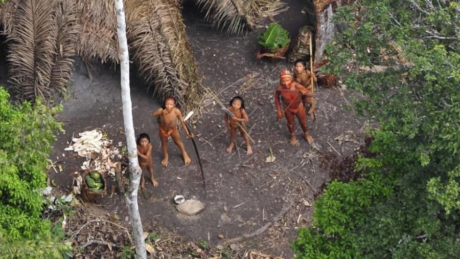 23.ago.2013 - Em janeiro de 2011, a ONG Survival divulgou imagens feitas da Funai de uma tribo de índios isolados na Amazônia brasileira, perto da fronteira com o Peru. Com detalhes até então inéditos, a pesquisa aérea revelou uma comunidade próspera e saudável com cestos cheios de mandioca e mamão fresco cultivados em suas roças - Gleison Miranda/Funai/Survival