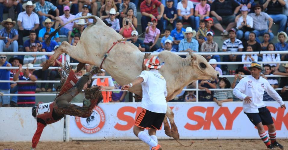 25.ago.2013 - Palhaço tenta destrair touro na Festa do Peão de Barretos