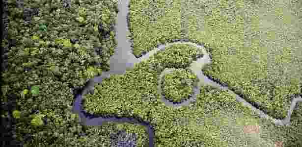 Amazônia - Miguel von Behr/Arpa