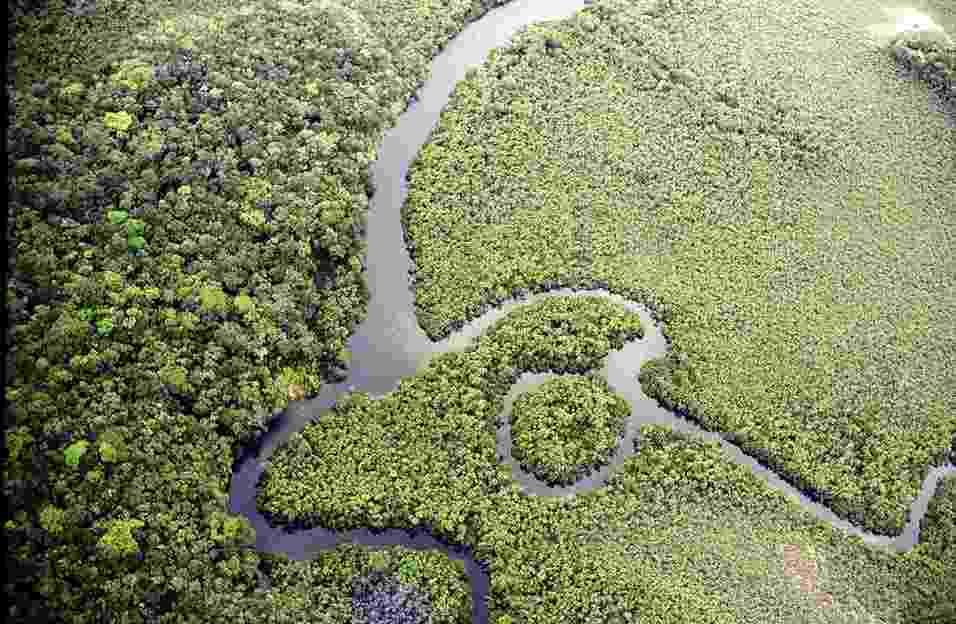 4.set.2013 - A Amazônia tem 4.196.943 milhões de quilômetros quadrados e a maior bacia hidrográfica do mundo, que cobre 6 milhões de quilômetros quadrados com seus 1.100 afluentes. O maior bioma do Brasil é fundamental para o equilíbrio ambiental e climático do planeta e a conservação dos recursos hídricos - Miguel von Behr/Arpa