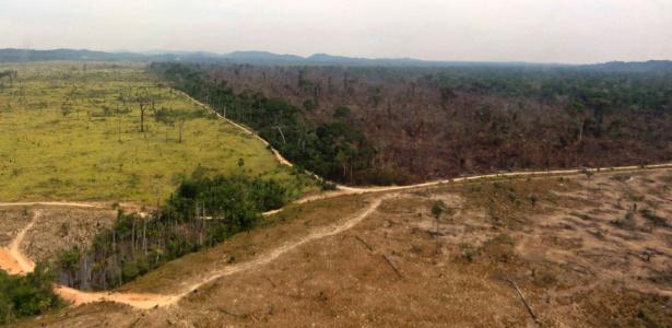 Área da Amazônia desmatada em Novo Progresso, no Pará - Nelson Feitosa/Ibama/Reuters