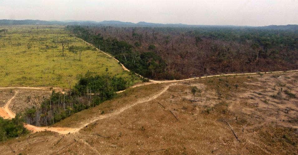 4.set.2013 - O Instituto Imazon detectou um aumento de 100% do desmatamento da Amazônia Legal entre agosto de 2012 e junho de 2013, mostrando o avanço da destruição após uma década de boa redução. Acima, imagem de uma área desmatada em Novo Progresso, no Pará, em agosto de 2012
