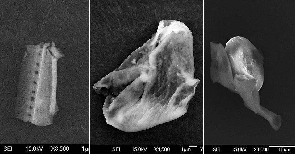 20.set.2013 - Cientistas da Universidade de Sheffield, na Inglaterra, apresentaram imagens de partículas vivas que vieram do espaço para a Terra. Segundo o grupo, a vida alienígena foi captada após um experimento que soltou um balão na estratosfera durante a chuva de meteoros Perseidas, que ocorreu em agosto passado
