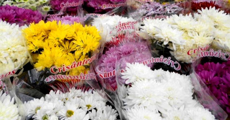 Floricultura Pronta Flora, em Holambra (SP)