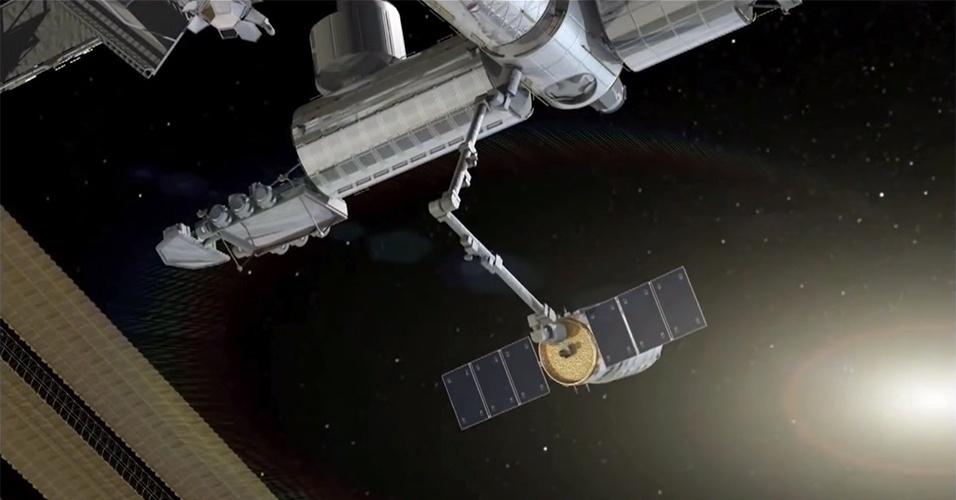 24.set.2013 - A Nasa (Agência Espacial Norte-Americana) e a Orbital Sciences decidiram adiar em quase uma semana a aproximação e a acoplagem da Cygnus (concepção artística) para não atrapalhar a chegada do novo trio de astronautas na Estação Espacial Internacional (ISS, na sigla em inglês), prevista para a próxima quarta-feira (25). A Nasa disse que só confirmará a nova data depois da acomodação da tripulação da missão 37, mas adiantou que a manobra espacial deverá acontecer só depois de sábado (28). A cápsula chegou a fazer contato com a ISS no último domingo (22), data inicial de sua chegada, mas um erro em um de seus programas impediu que ela prosseguisse com a aproximação e fosse agarrada pelo braço robótico - como a Cygnus precisou de mais 48 horas para encontrar a trajetória orbital da plataforma, os cientistas disseram que o cronograma apertado atrapalharia os astronautas a bordo