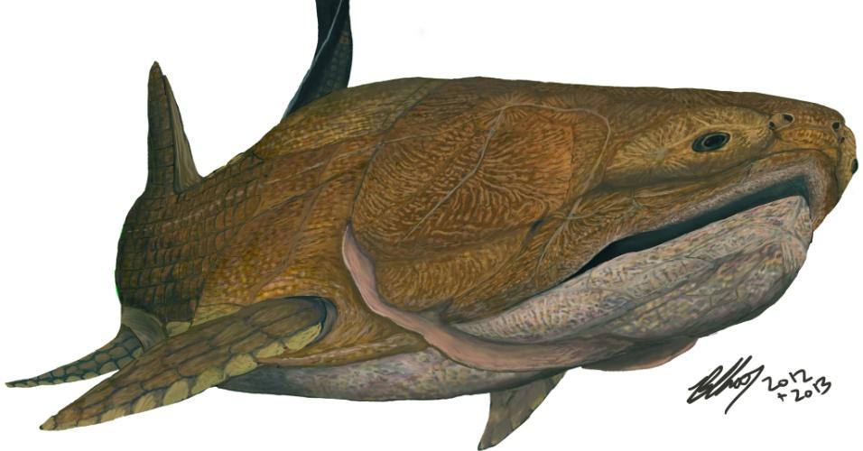 """26.set.2013 - Um fóssil de 419 milhões de anos (acima, em destaque) achado na represa de Xiaoxiang, na China, é do vertebrado mais primitivo a ter uma mandíbula moderna, incluindo o osso da arcada dentária, revela equipe de paleontólogos. Com forte carapaça, o """"Entelognathus primordialis"""" (ilustração) era um peixe da extinta família dos placodermos, com um crânio complexo e pequeno e ossos na mandíbula"""