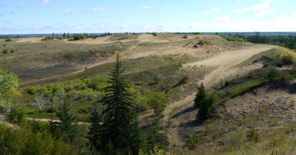 27.set.2013 - A região de Spirit Sands, um raro deserto de dunas localizado no parque da província de Spruce Woods, no Canadá, está desaparecendo gradualmente com o avanço da vegetação. As dunas, que são os últimos vestígios não vegetais que restam do delta do rio Assiniboine, se formou há 12 mil anos depois que uma geleira que cobria a área ter derretido