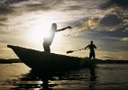 Governo quer criar selo para combater a pesca ilegal - Divulgação/Ministério da Pesca e Aquicultura