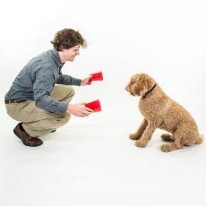 Brian Hare, autor de livros sobre inteligência e comportamento animal, diz que cães usam humanos como 'ferramenta'
