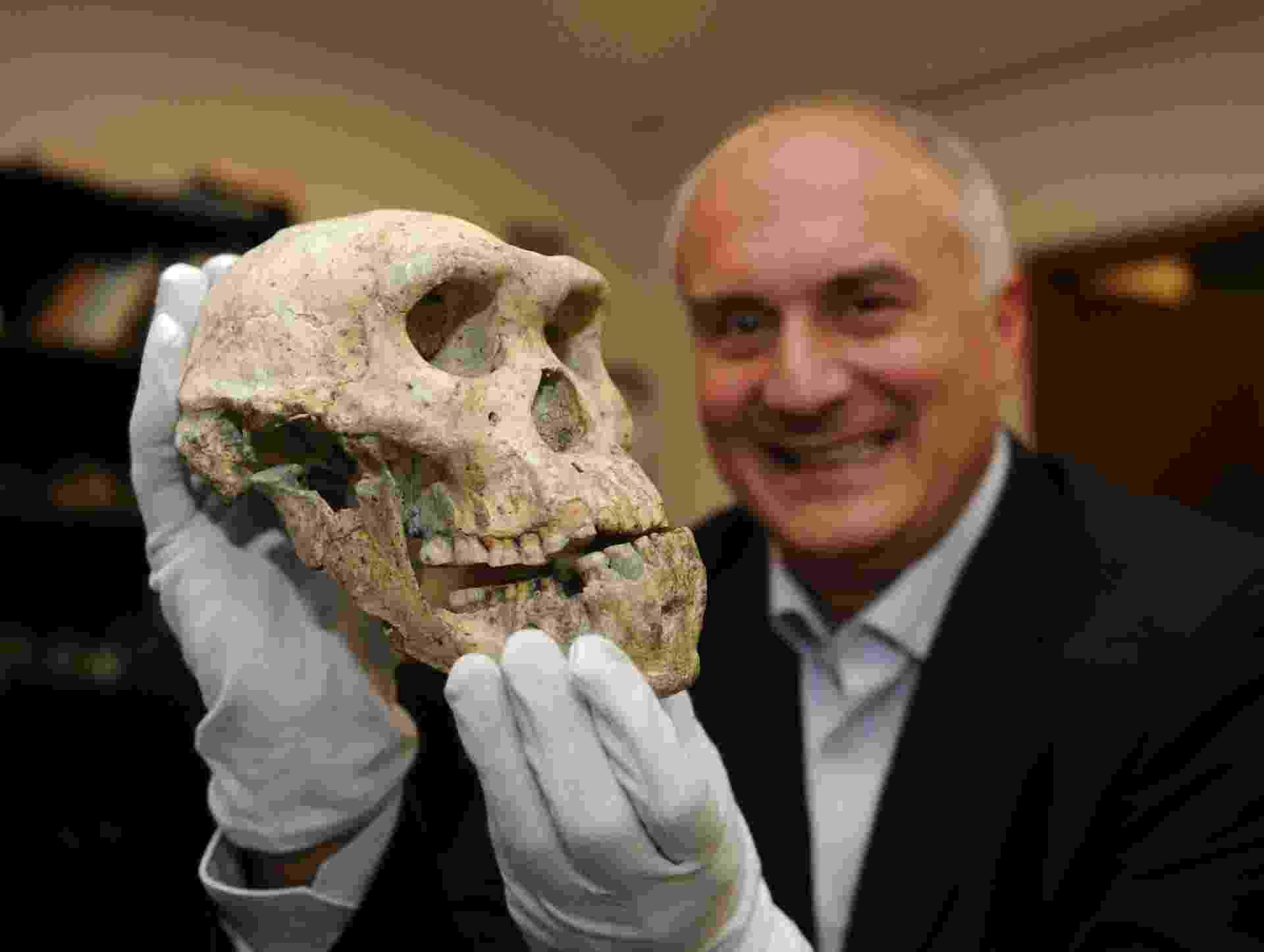 """18.out.2013 -David Lordkipanidze, diretor Museu Nacional da Geórgia, em Tbilisi, exibe o """"crânio 5"""", de 1,8 milhão de anos, que combina características nunca observadas no mesmo ser primitivo até então. Descoberto em 2005 no sítio arqueológico de Dmanisi, o fóssil é uma nova evidência de que o antepassado do ser humano pertenceu a uma única espécie com muitos aspectos diferentes - Vano Shlamov/AFP"""