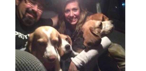 A apresentadora Luísa Mell postou em sua página no Facebook uma foto com os cães da raça beagle - Reprodução/Facebook