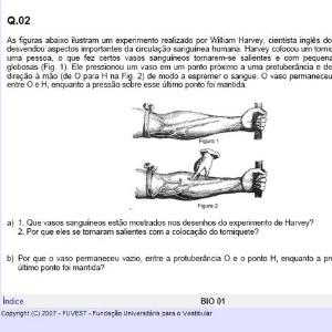 Questão do Enem 2013 usa mesma figura de pergunta discursiva da Fuvest 2007 (foto) - Reprodução/Fuvest