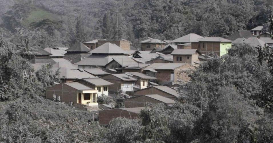5.nov.2013 - Cinzas do vulcão Monte Sinabung cobrem árvores e casas na vila de Mardingding, na ilha de Sumatra, na Indonésia, nesta terça-feira (5). Mais de mil pessoas foram evacuadas na ilha após o vulcão entrar em erupção pela terceira vez nos últimos meses