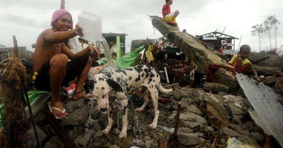 12.nov.2013 - Homem da banho em cachorro de estimação entre os escombros de casas destruídas em Tacloban, leste da ilha de Leyte, nas Filipinas