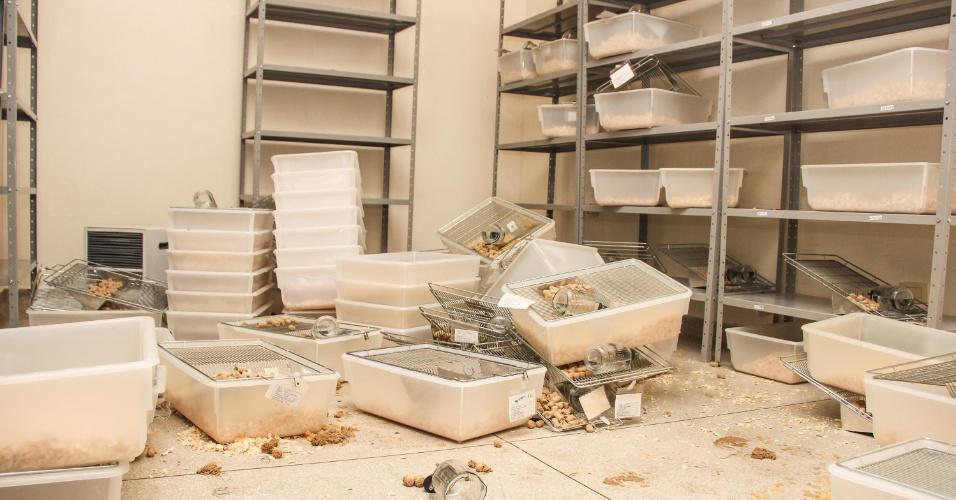 13.nov.2013 - Laboratório do Instituto Royal, em São Roque (SP), foi depredado por cerca de 50 pessoas que invadiram o local na madrugada desta quarta-feira (13).