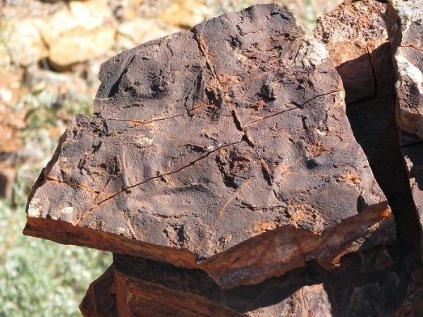 """13.nov.2013 - Superfície de rocha mostra rachaduras oscilatórias poligonais de 3,48 bilhões de anos na Formação Dresser, na Austrália. Tal estrutura sedimentar é de origem biológica, o que caracteriza a existência de micro-organismos antigos que formaram um tipo """"carpete"""" sobre a rocha"""