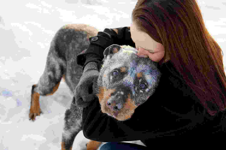 21.nov.2013 - Fotógrafa americana registra últimos momentos de animais de estimação com seus donos - Sarah Ernhart/sarahbethphotography.com