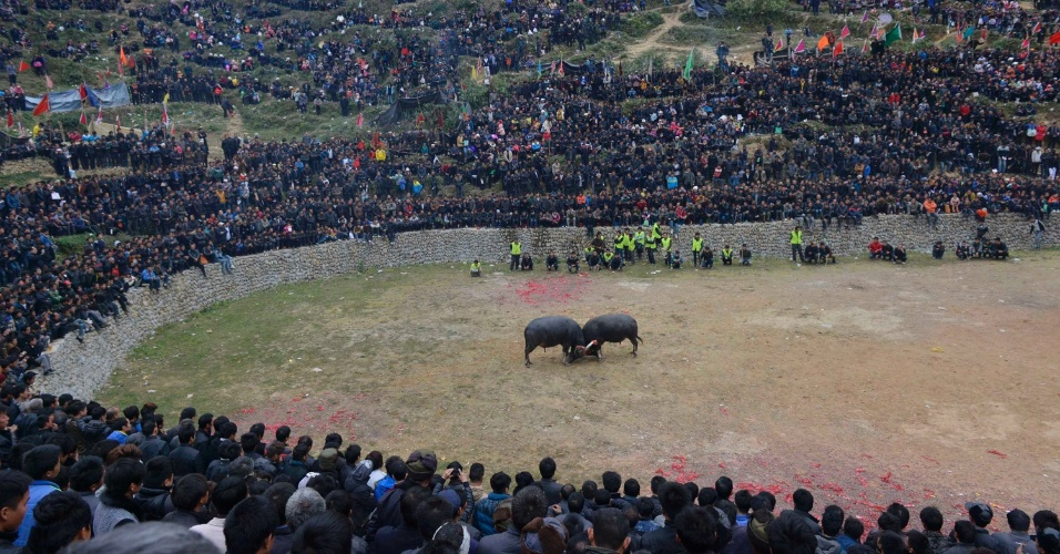 12.dez.2013 - Centenas de pessoas assistem a uma luta entre touros, nesta quinta-feira (12), em Congjiang, na China. Cerca de 60 animais de vilas diferentes participam do torneio