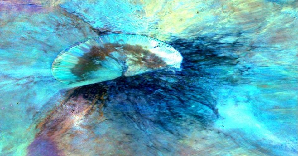 17.dez.2013 - Esta imagem composta da missão Dawn da Nasa (Agência Espacial Norte-Americana) mostra a cratera chamada Antonia, que fica na base de Rheasilvia, no hesmisfério Sul do gigante asteroide Vesta