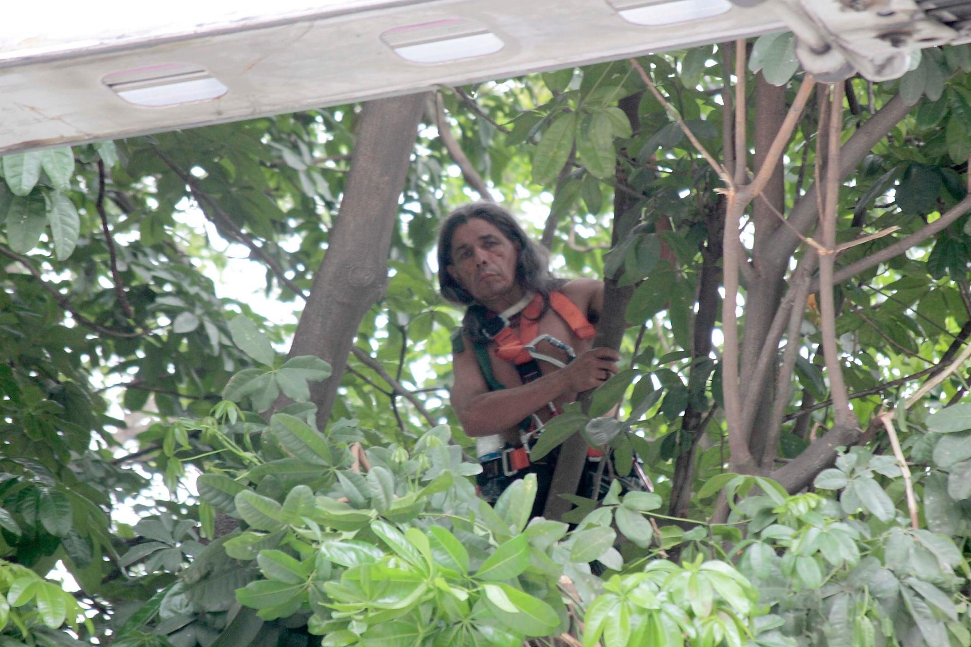 17.dez.2013 - O índio Urutau José Guajajara, da tribo guajajara, amanheceu em cima de uma árvore, a quatro metros de altura, próxima ao prédio do antigo Museu do Índio, que fica nas imediações do Estádio do Maracanã, zona norte do Rio. O índio realizava um protesto desde a manhã de segunda-feira (16), quando policiais militares do Batalhão de Choque retiraram 30 pessoas do prédio. Ele foi o único que não deixou a área após ação de reintegração de posse. Os bombeiros conseguiram retirar o índio cerca de 26 horas depois dele ter subido na árvore