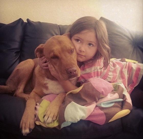 18.dez.2013 - Cão recebe abraço aconchegante da sua pequena dona