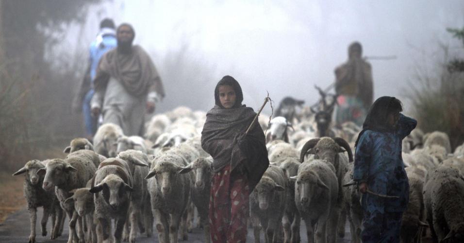 19.dez.2013 - Indianos conduzem rebanho em meio a espessa névoa nos arredores de Jammu, na Índia