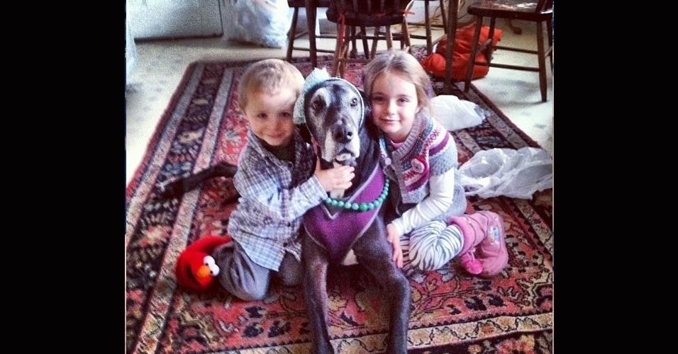 19.dez.2013 - Há até o cão modelo, que não se importa em ganhar um figurino novo, mesmo que ele não seja tão charmoso
