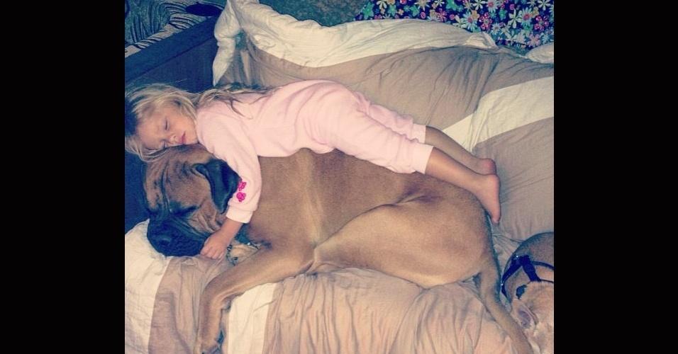 19.dez.2013 - Tem até aquele cão que de tão fofo se transforma em colchão para uma boa noite de sono