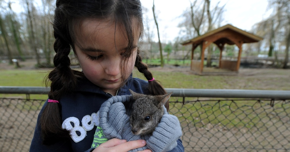 2.jan.2014 - Lina Ismer, 6, filha de Julia Ismer, diretora do zoológico Tierpark Stroehen, segura o bebê canguru