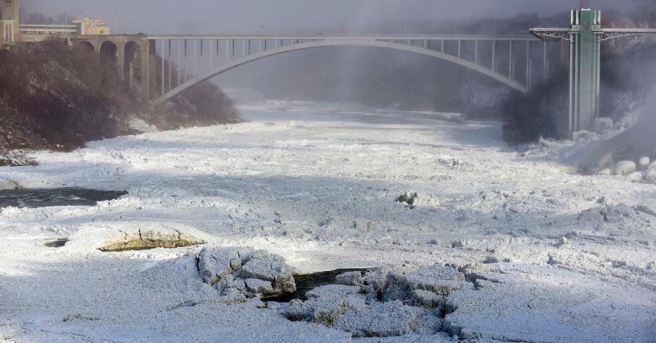 8.jan.2014 - Águas das Cataratas do Niágara estão congeladas embaixo da ponte do Arco-Íris, em Ontario, no Canadá, nesta quarta-feira (8). O ar congelante e o vórtex polar que afetaram cerca de 240 milhões de pessoas nos Estados Unidos e no sul do Canadá se dissiparão na segunda metade desta semana, iniciando um longo degelo previsto para janeiro, de acordo com previsões meteorológicas. Subiu para 21 o número de mortos por conta da onda de frio polar que atinge boa parte dos Estados Unidos