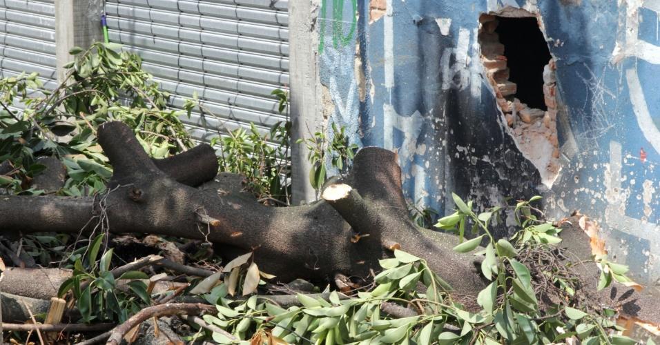 8.jan.2014 - Bombeiros trabalham para retirar uma árvore de grande porte que caiu no meio da rua Itapira, bairro da Mooca, em São Paulo, nesta quarta-feira (8)