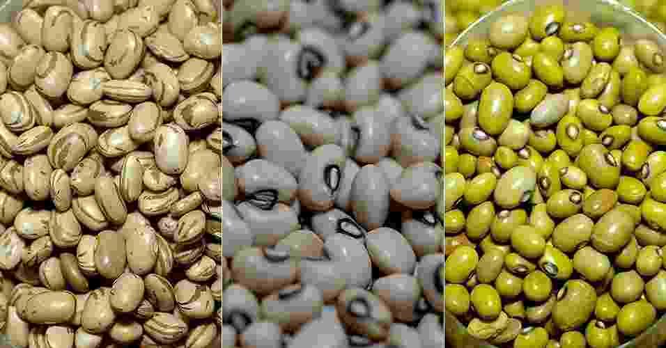 Segundo a Conab (Companhia Nacional de Abastecimento), o Brasil produz em média 3 milhões de toneladas de feijão por ano. Há diversos tipos disponíveis no mercado, mas nem todos são consumidos em grande escala. Clique nas fotos acima e conheça as variedades de feijão e suas características - Montagem/UOL